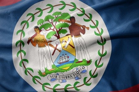 micro print: waving colorful national flag of belize.