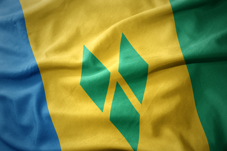 micro print: waving colorful national flag of saint vincent and the grenadines. Stock Photo