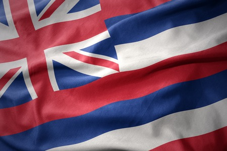 micro print: waving colorful national flag of hawaii state.