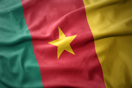 cameroon: waving colorful national flag of cameroon.