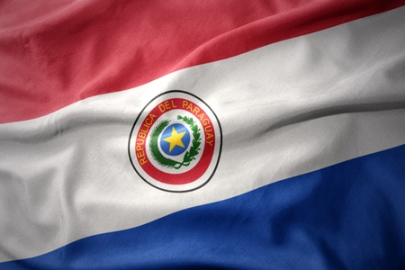 micro print: waving colorful national flag of paraguay. Stock Photo