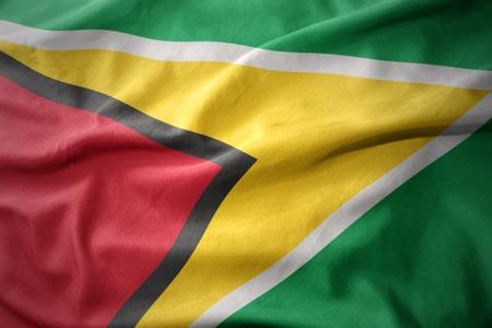 guyanese: waving colorful national flag of guyana.