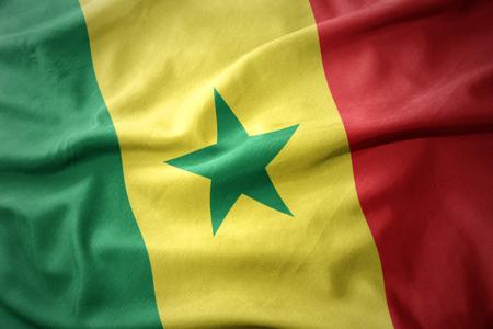 waving colorful national flag of senegal.