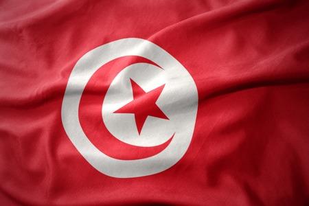 waving colorful national flag of tunisia.
