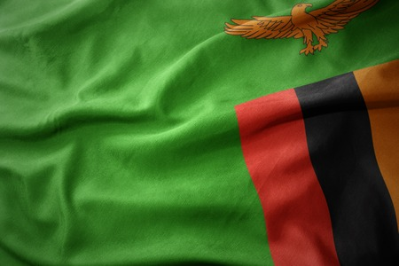 micro print: waving colorful national flag of zambia.