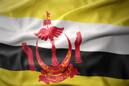 waving colorful national flag of brunei.