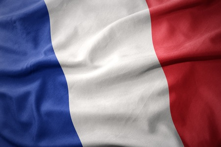 micro print: waving colorful national flag of france.
