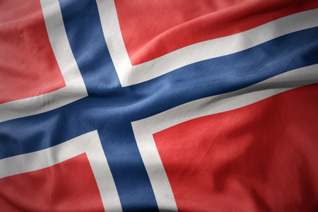 micro print: waving colorful national flag of norway.