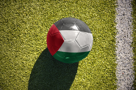 football ball with the national flag of palestine lies on the green field near the white line