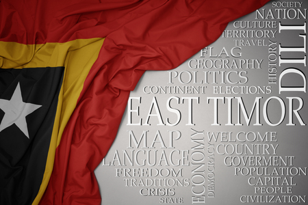 waving colorful national flag of east timor on a gray background with important words about country . concept