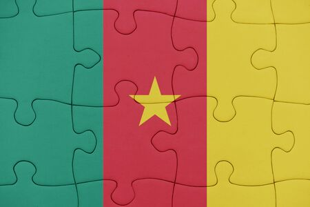 puzzle with the national flag of cameroon. concept