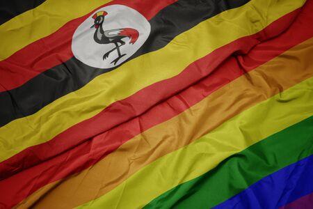 waving colorful gay rainbow flag and national flag of uganda. macro