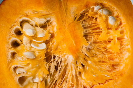 longitudinal: Closeup full frame on a longitudinal section of orange pumpkin after freshly harvest in autumn  We can see pulp and seeds  Shooting studio with macro lens