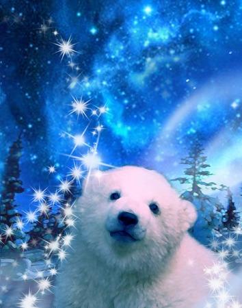 Oso polar de bebé en el Polo Norte por la noche en virtud de la aurora boreal, estrellas y destellos Vectores