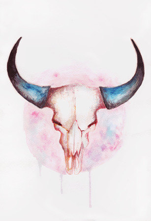 Watercolor illustrations drawing cow skull with horns illustration