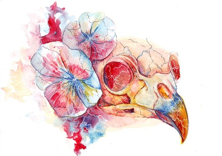 bright watercolor raven skull in flowers, the conductor\'s death