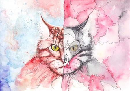 angel and devil: watercolor cat showing the duality of nature Stock Photo