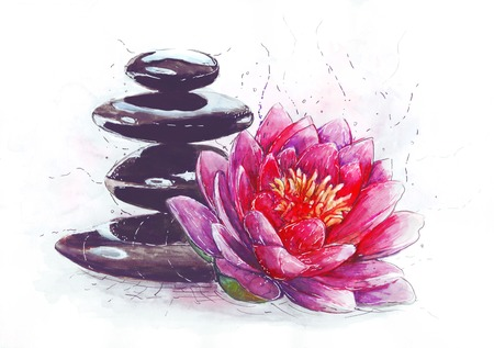 lotus and stones Stock Photo