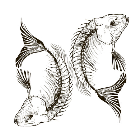 sea fish: Vector fish skeleton, a talisman, a sign