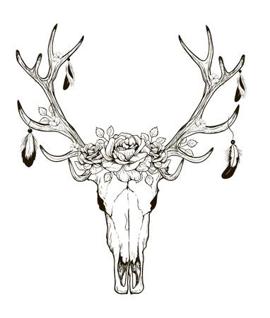 deer skull: Deer Skull black white sketch, illustrations drawing cow skull with horns Illustration