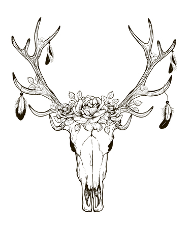 Deer Skull black white sketch, illustrations drawing cow skull with horns Stock Illustratie