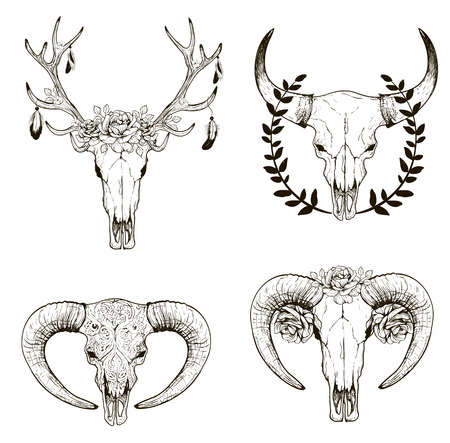 animal skull: Abstract animal background line art. Set for your design Illustration