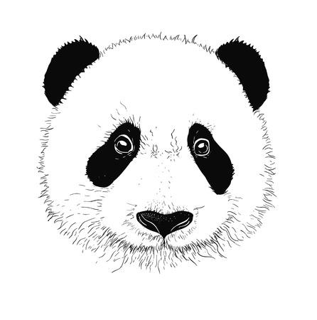 Babypanda gezichtje. Babypanda. Aziatische beer. Cute panda. Positieve panda. Geïsoleerd panda hoofd op een witte achtergrond. Panda hoofd silhouet Stockfoto - 57595831