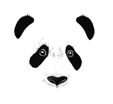 Baby panda face icon. Baby panda. Asian bear. Cute panda. Positive panda. Isolated panda head on white background. Panda head silhouette 矢量图像