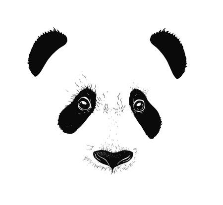 16 026 Cartoon Panda Stock Illustrations Cliparts And Royalty Free
