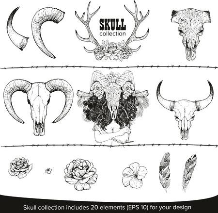 deer skull: Abstract animal background line art. Set for your design Illustration