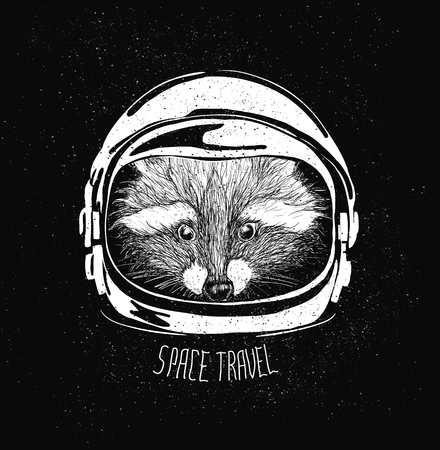 racoon: abstract astronaut helmet to space travel vector emblem isolated Illustration