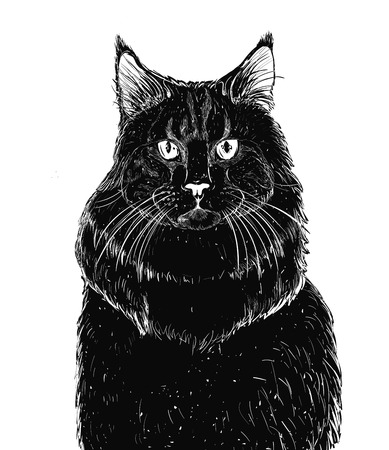 Black cat icon isolated on white background. Vector art.