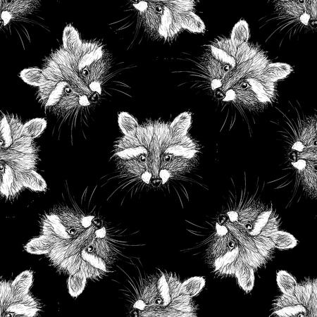 amusing: hand drawn raccoon Stock Photo