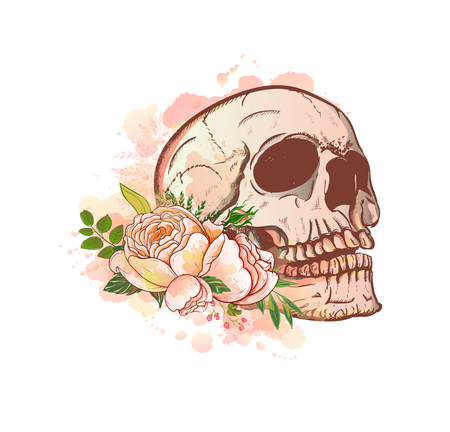 Skull and Flowers Vector Illustration Day of The Dead.