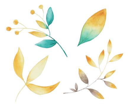 green golden foliage