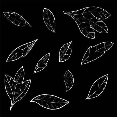 Set of hand drawn branches. Ink illustration. Illustration