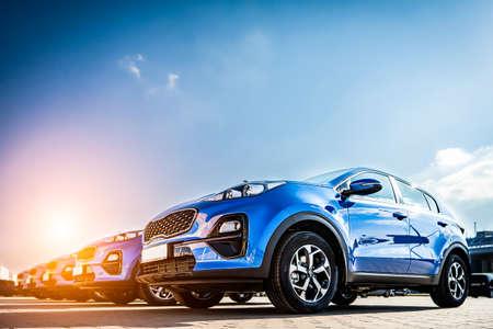 Blue Family business spotrs hatchback Car sunset. Business success concept