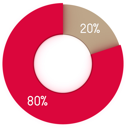 20: 20% 80% red and brown pie chart infographics
