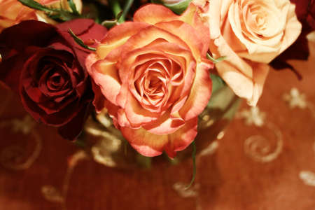 roses arranged in a festive bouquet - soft sepia Stock Photo