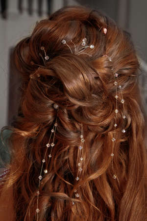 carroty: golden-brown curly mane