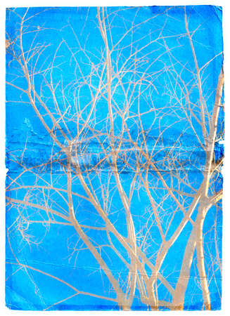Naked tree branches outlines on textured paper background photo