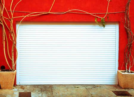 Metal garage door framed by leafless plants in France