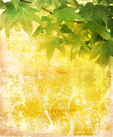 Grunge leaves background on paper texture with swirls and scrolls