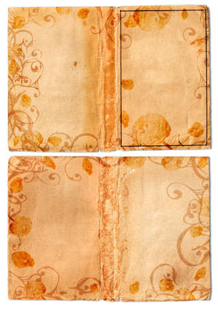 Grunge open books with stained and folded pages, swirls and scrolls border photo