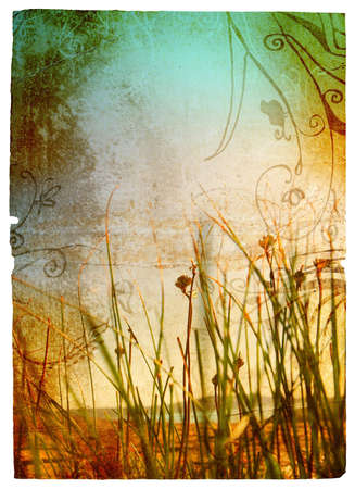 wild grass: Grunge fondo con textura de papel manchado y la hierba silvestre