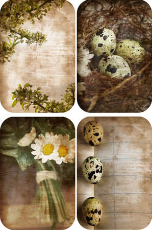 Set of four grunge nature postcards with eggs, flowers and space for text.