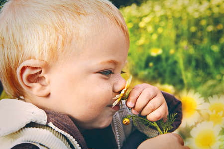 smelling: small baby boy holding a daisy in his hand and smelling it with retro effect Stock Photo
