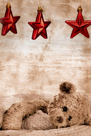 teddy bear in blanket under three Christmas red stars on grunge background with copy space - generic toy with slightly modified appearance