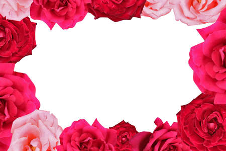 pink roses: pink and red rose frame picture border. Stock Photo