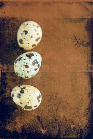three quail easter eggs on grunge background with space for text. photo